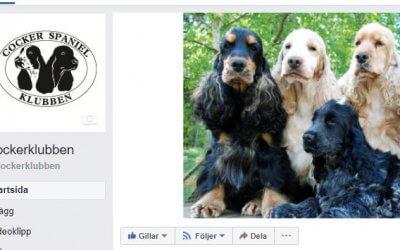 Ny facebooksida