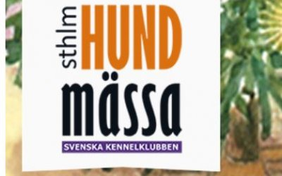 Hundmässan i Älvsjö
